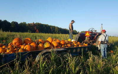 Fall Orchards and Goodies!