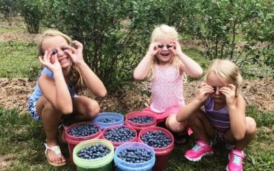 5 Reasons to Take Your Kids to a U-Pick Farm this Summer