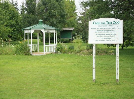 Cadillac Tree Zoo